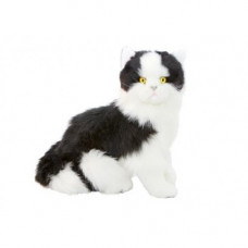 Black & White Plush Cat